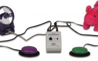 Switch latch and timer 2 sensori